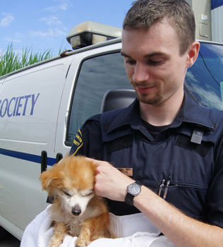 Oakville Milton Humane Society Animal Control Officer Helps Pup