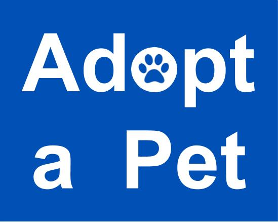 Adopt a pet - Animal Viewing Hours