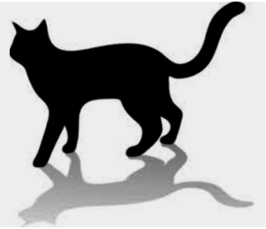 Shadow Cat 300x258 - Shadow Cat Program