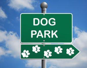 dog park 1497655 1920 300x232 - Bylaw Enforcement & Investigations