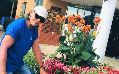 OMHS Blooms! A Big Green Thumbs up to Susan Eglit