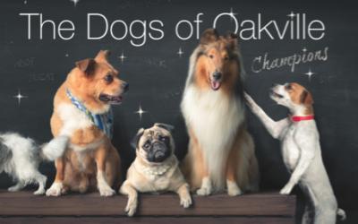 Dogs of Oakville – Champions