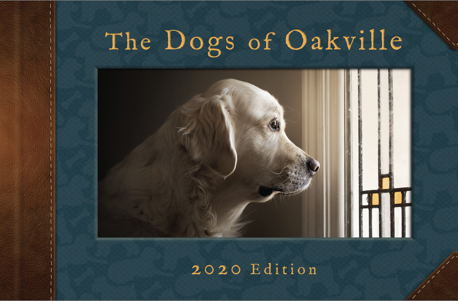 DOO book cover - Dogs of Oakville