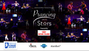 Screen Shot 2020 11 09 at 9.07.46 AM 300x171 - Prancing with the Stars, Physical Distancing Edition a big success!