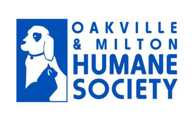 Logo OMHS Blu RGB 400x250 - News