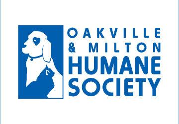 Logo OMHS Blu square 360x250 - News