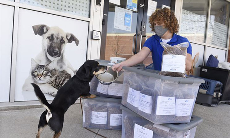 'There's a great need': OMHS launches Pet Food Bank